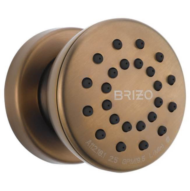 Brizo Bodysprays Shower Heads item 84110-BZ