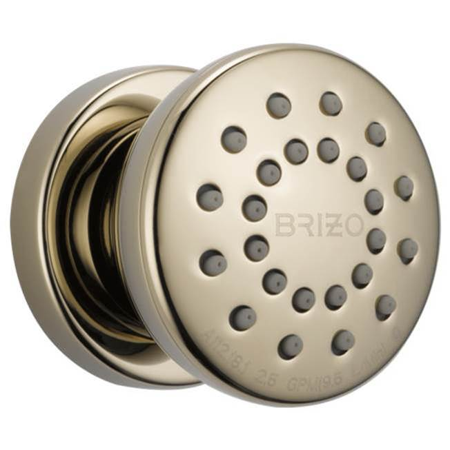 Brizo Bodysprays Shower Heads item 84110-PN