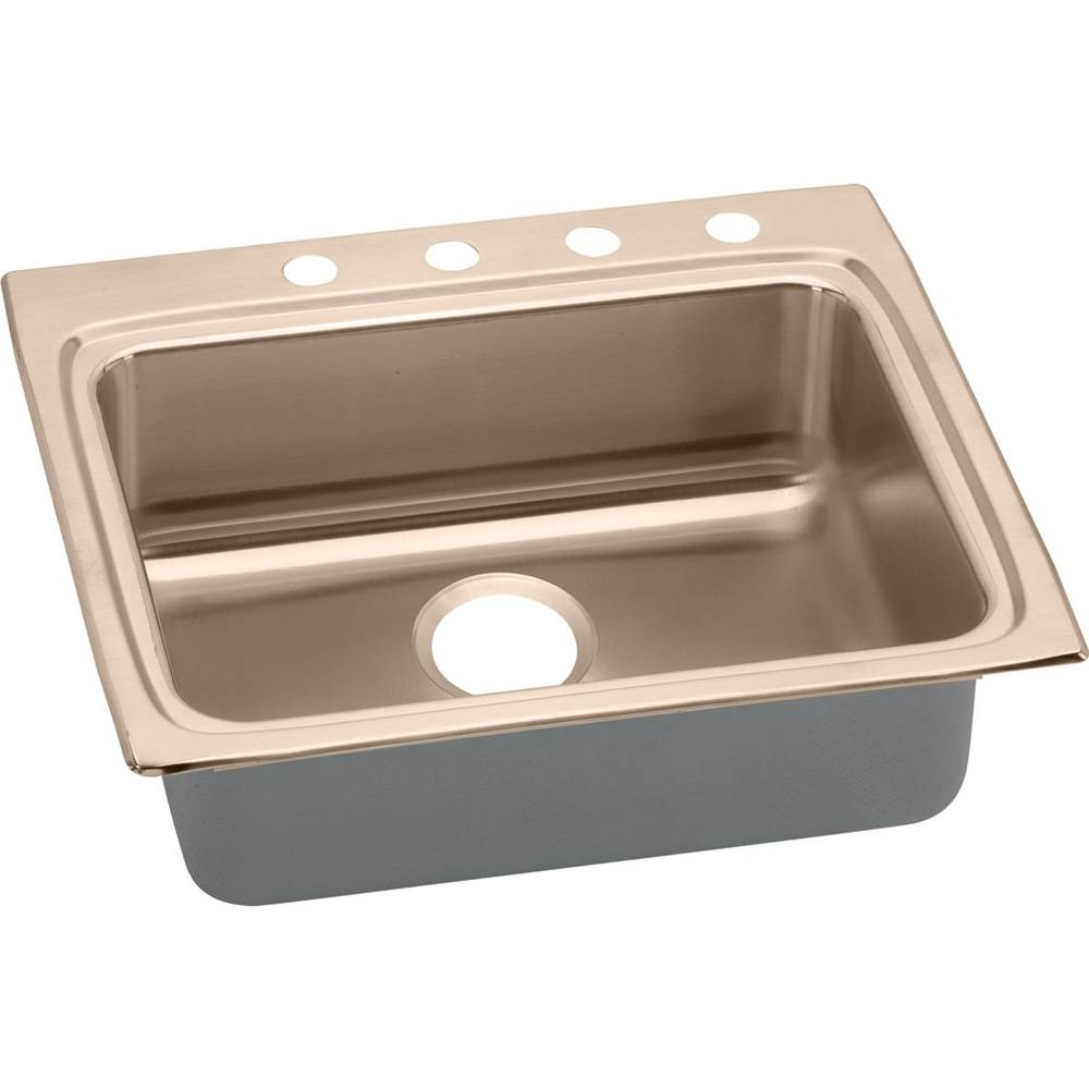 Elkay Drop In Kitchen Sinks item LRAD2522504-CU