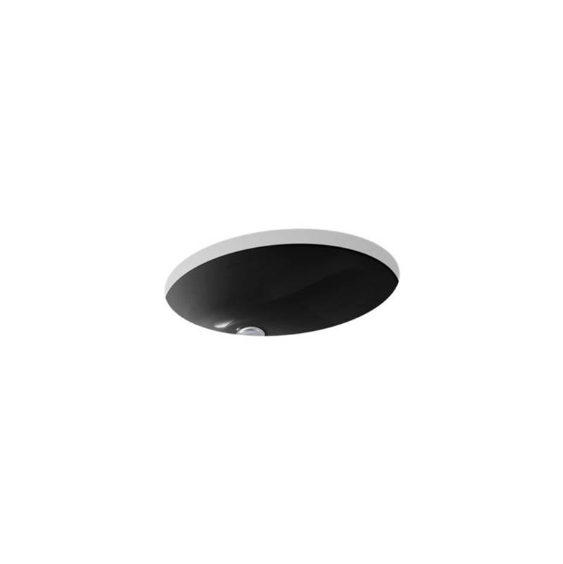 Kohler Undermount Bathroom Sinks item 2210-7